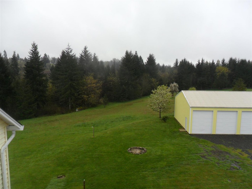 Looking towards the back fo the property... about 3.5 acres is sloped grass and the rest is steeper trees.  Beyond/within those trees is a creek and a bunch of timber property.