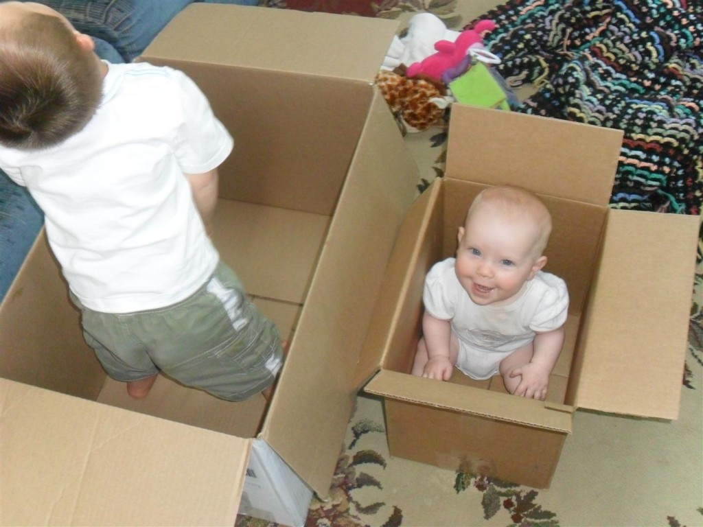 Kids in boxes.  Love.