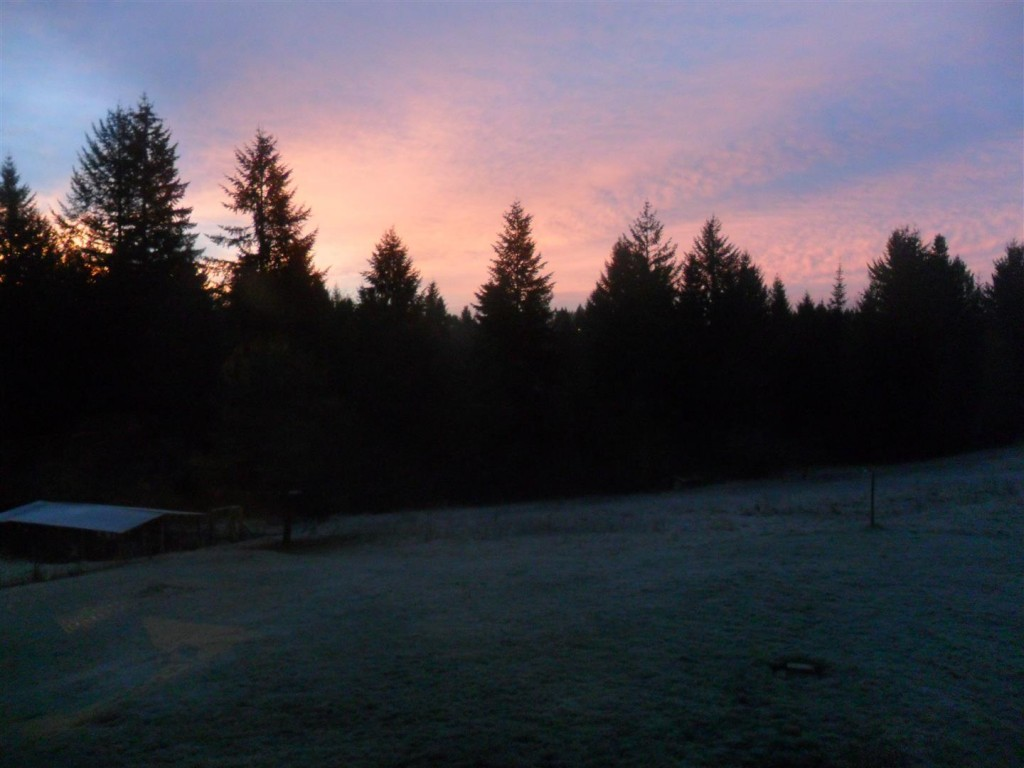 A beautiful frosty sunrise a few days ago.