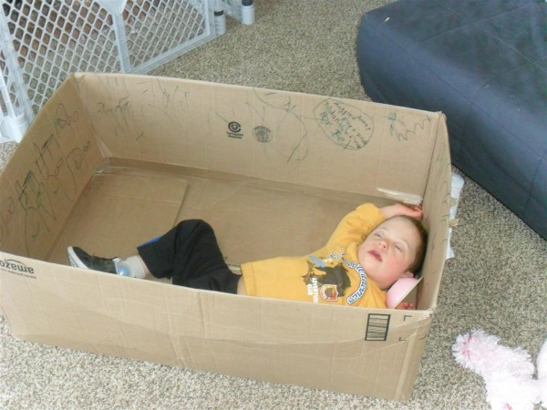 Jordan asleep in a box.