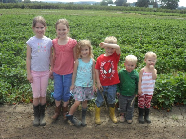 Strawberry picking at our old digs with good friends!