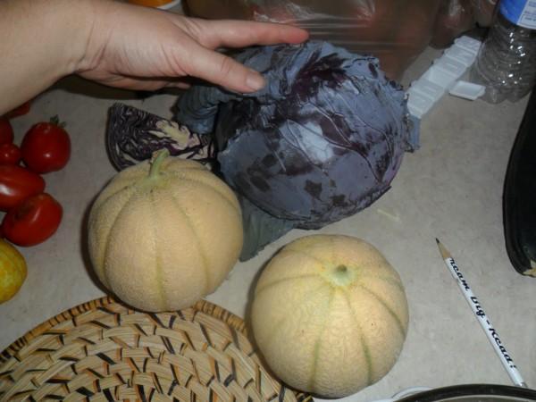 Cabbage and melons