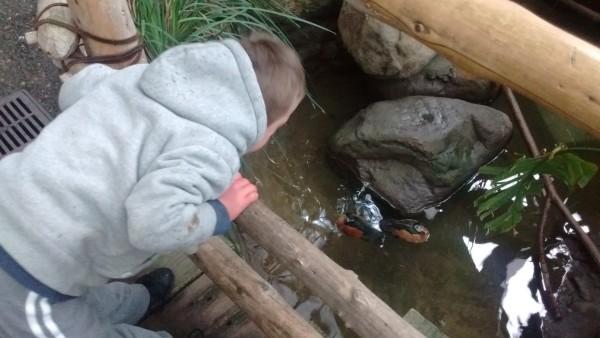Jordan loved the water in the atrium.