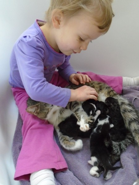 Carolyn is very good with animals, despite being only 3 years old. I think it's her more deliberate and predictable behavior. She was adorable.