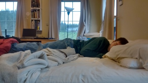 When Brian works from home, he makes really good use of his fifteen minute breaks. He is master of the power nap.