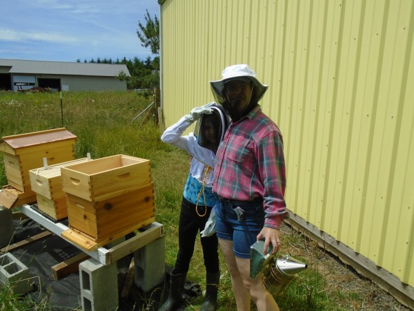 Anna was AWESOME and came for the bee hive inspection!