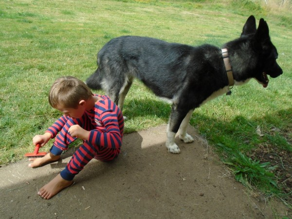 Ruby is a big doggy!